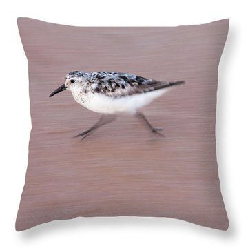 Sanderling On The Run Throw Pillow