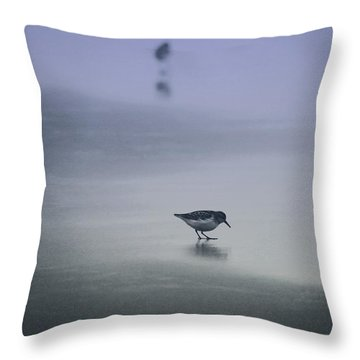 Sanderling Throw Pillow