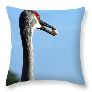 Sandhill Crane 017 Throw Pillow