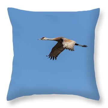 Throw Pillow featuring the photograph Sandhill Crane 2017-1 by Thomas Young