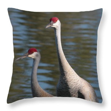 Sandhill Crane Couple By The Pond Throw Pillow