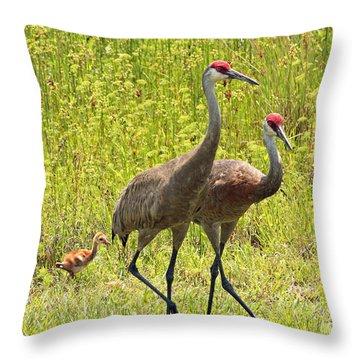 Sandhill Crane Family Throw Pillow