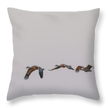 Sandhill Crane Flying 2 Throw Pillow