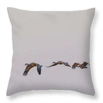 Sandhill Crane Flying 2 Throw Pillow