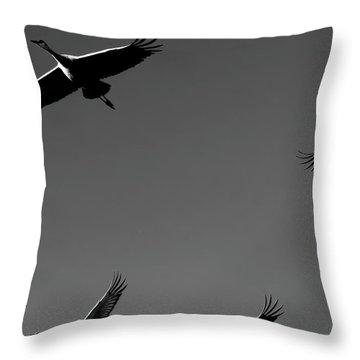 Throw Pillow featuring the photograph Sandhill Crane In Flight by Britt Runyon