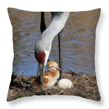 Sandhill Crane New Family Throw Pillow