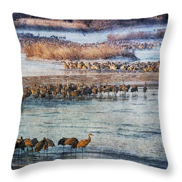 Sandhill Crane Platte River - Textured Throw Pillow