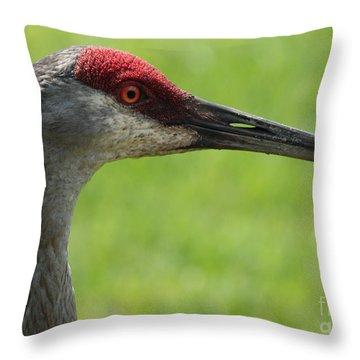 Sandhill Crane Profile Throw Pillow by Carol Groenen