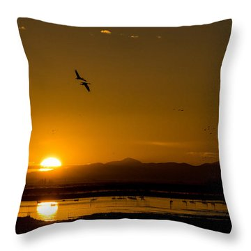 Sandhill Crane Sunrise Throw Pillow