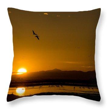 Sandhill Crane Sunrise Throw Pillow
