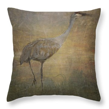 Sandhill Crane Watercolor Throw Pillow by Janice Rae Pariza