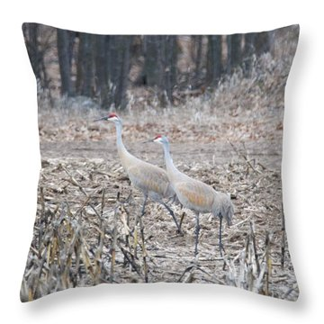 Sandhill Cranes 1171 Throw Pillow by Michael Peychich