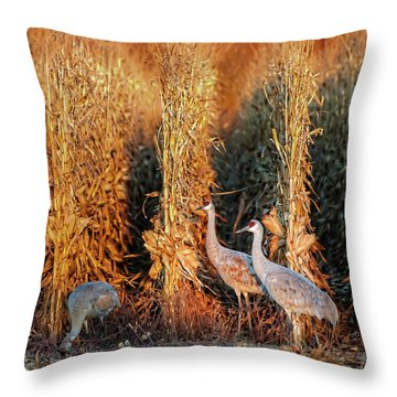 Sandhill Cranes At Sunrise Throw Pillow
