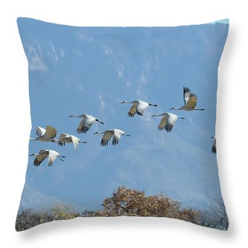 Sandhill Cranes In Flight Throw Pillow by Alan Toepfer