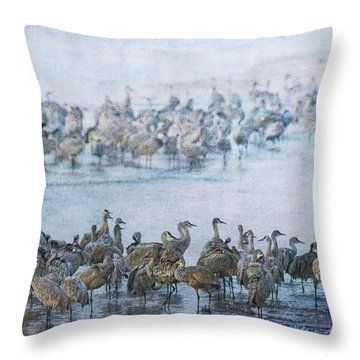 Sandhill Cranes Texture Throw Pillow
