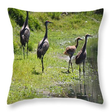 Sandhill Family By The Pond Throw Pillow by Carol Groenen