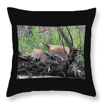 Sandhill Family  Throw Pillow