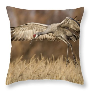 Sandhill Landing Throw Pillow