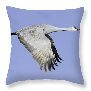 Sandhill On A Clear Morning Throw Pillow