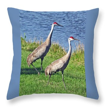Sandhill Pair Throw Pillow