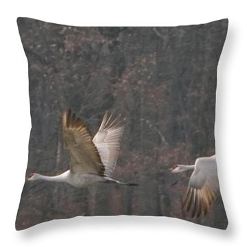 Throw Pillow featuring the photograph Sandhills In Flight by Shari Jardina