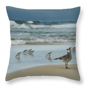 Throw Pillow featuring the photograph Sandpiper Beach by Renee Hardison