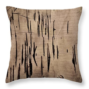 Throw Pillow featuring the photograph Sandpiper By The Lake by Barbara Manis