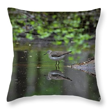 Throw Pillow featuring the photograph Sandpiper In The Smokies II by Douglas Stucky