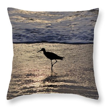 Sandpiper On A Golden Beach Throw Pillow