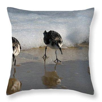 Sandpipers Feeding Throw Pillow