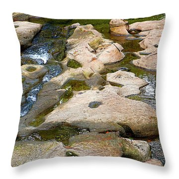 Throw Pillow featuring the photograph Sandstone Creek Bed by Sharon Talson