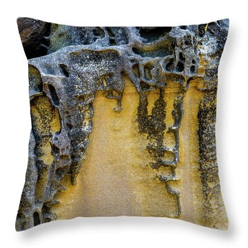 Throw Pillow featuring the photograph Sandstone Detail Syd01 by Werner Padarin