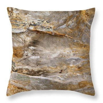 Starved Rock Throw Pillows