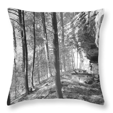Sandstone Steps In The Woods Throw Pillow