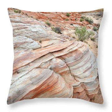 Throw Pillow featuring the photograph Sandstone Wash In Valley Of Fire by Ray Mathis