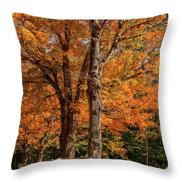 Sandwich Autumn Throw Pillow