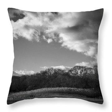 Sandwich Marsh Throw Pillow