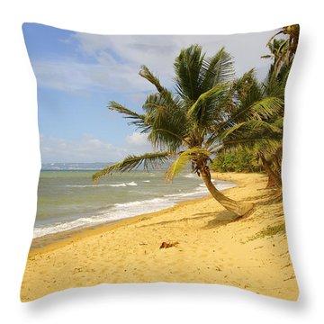 Sandy Beach II Throw Pillow