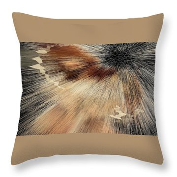 Sandy Light Speed Throw Pillow