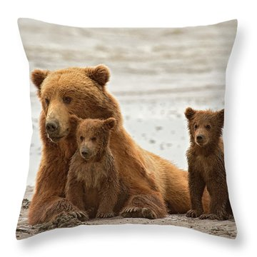 Sandy Paws Throw Pillow by Aaron Whittemore