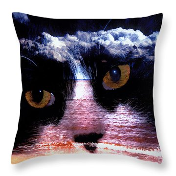 Sandy Paws Throw Pillow by Clayton Bruster