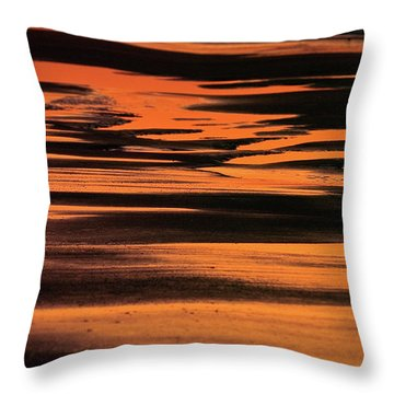 Sandy Reflection Throw Pillow