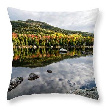 Reflection Sandy Stream Pond Me. Throw Pillow