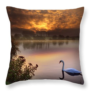 Sandy Water Park 2 Throw Pillow