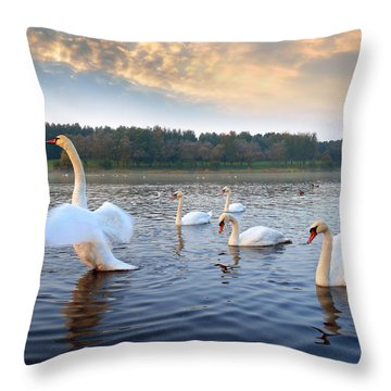 Sandy Water Park 5 Throw Pillow
