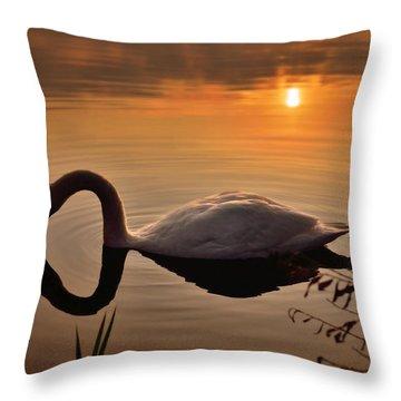 Sandy Water Park 6 Throw Pillow