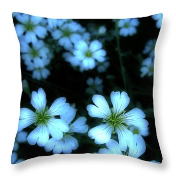 Sandywinks Throw Pillow