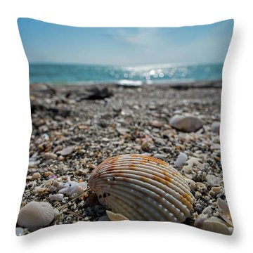 Sanibel Island Sea Shell Fort Myers Florida Throw Pillow