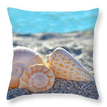 Sanibel Treasures  Throw Pillow