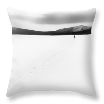 Sannikov Land Throw Pillow